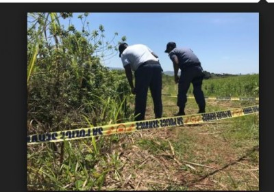 Girl's body found naked hand-tied in the sugarcane field