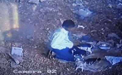 कुत्ते के पिल्लै को उठाया और खोल दी अपनी पेंट की ज़िप, CCTV कैमरे में कैद हुई हरकत