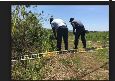 Dead body found in a plastic bag in the farm, investigation underway