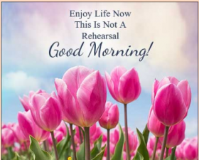 Every day is an auspicious day. Good morning, status and shayari...