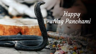 Nagapanchami 2018: Information about the sacred festival associated with Naga Devta