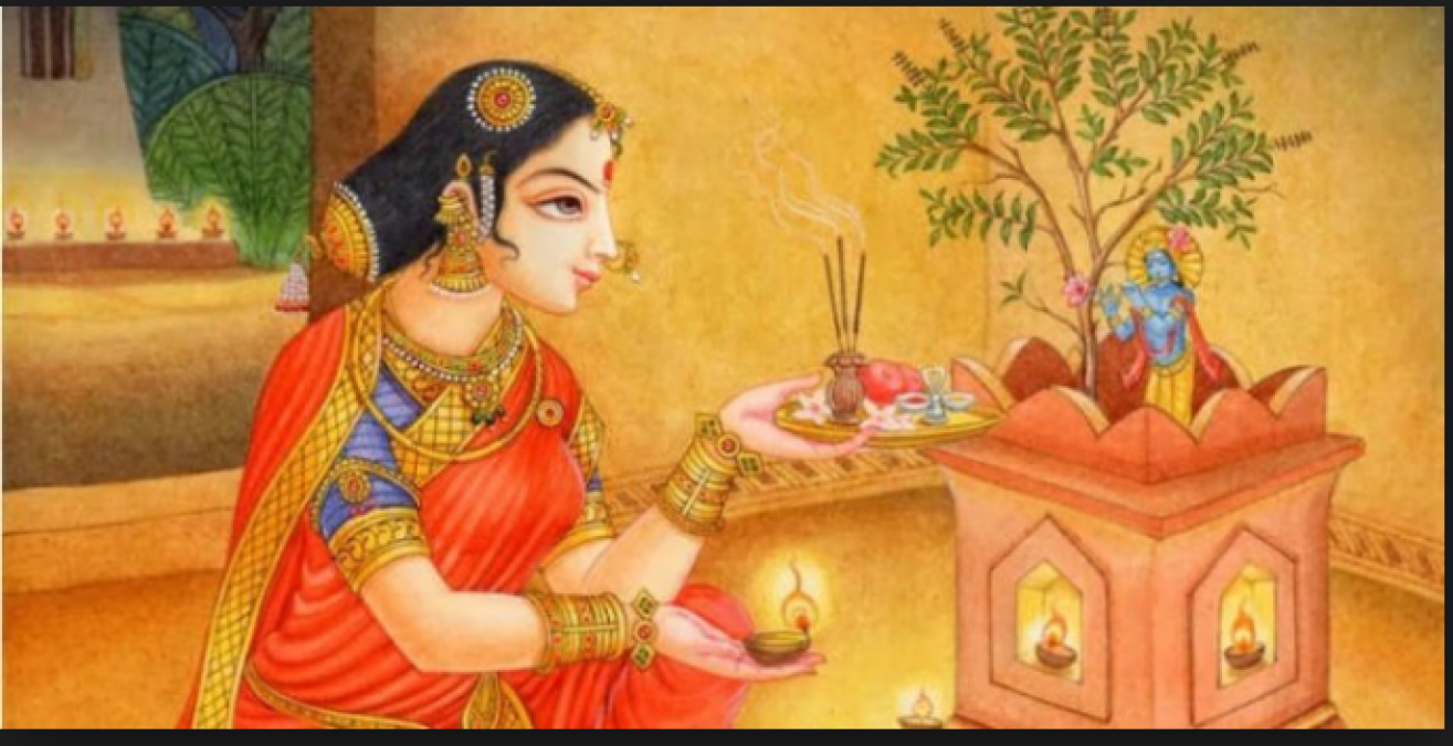 Tulsi or Basil has significant importance of worshiping every day