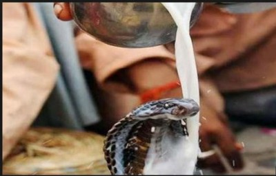 Nag Panchami: Some interesting facts related to snakes