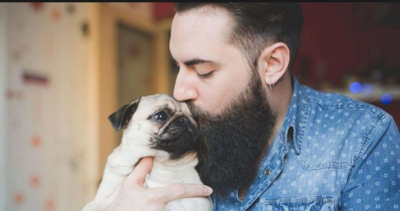 Here a Study shows dirty facts about men beard and compares it dog's fur