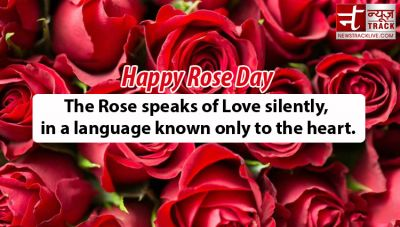 Rose Day Special: Rose colour tells much about your loves…know here