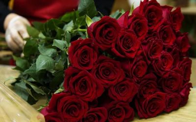 Rose Day: This is how you can make the memorable start of the Valentine's week, know ideas