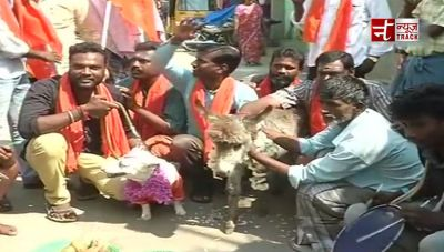 Hindu group gets a dog and a donkey married in protest against Valentine's Day