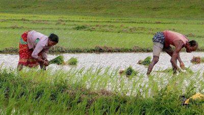 Madhya Pradesh: BJP raises question on debt waiver, Congress responds harshly