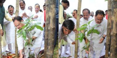रघुबर दास और जेपी नड्डा ने शुरू किया सदस्यता अभियान, वृक्षारोपण भी किया