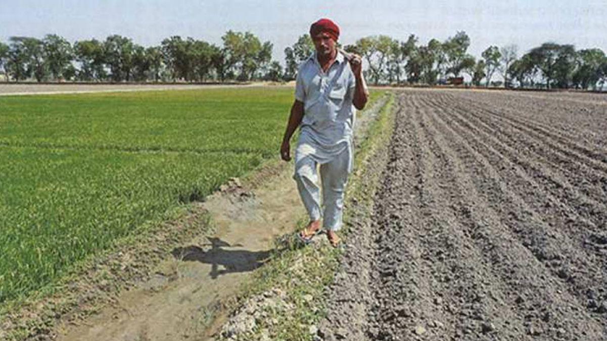 राजस्थान में कितनी है किसानों की आबादी ? गहलोत सरकार के पास नहीं कोई जवाब