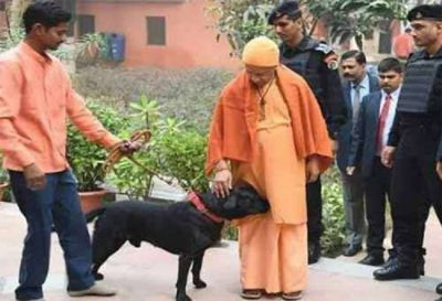 UP CM Yogi Adityanath's Pet Dog, Kalu is Internet's Newest Celebrity