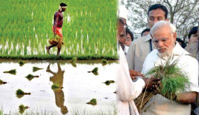 Jharkhand gets second place in Pradhan Mantri Kisan Manadhan Yojana, CM Raghubar congratulated farmers
