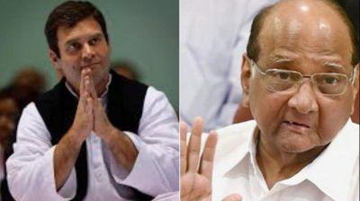 महाराष्ट्र चुनाव: परिणाम से पहले ही विपक्ष में घमासान, NCP बोली- अगर हम हारे तो कांग्रेस जिम्मेदार