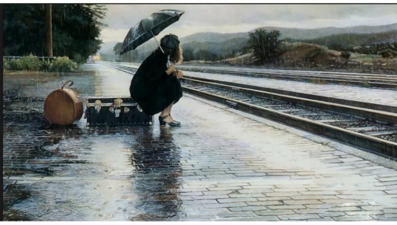 बारिश का मौसम