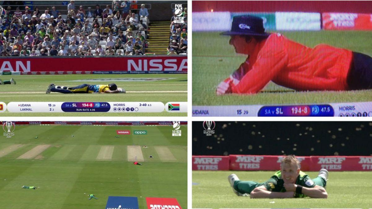 SL vs SA मैच में मधुमक्खियों ने बोला धावा, मैदान पर लेट गए सभी खिलाड़ी