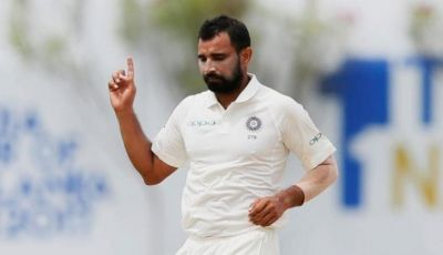 Shami will surrender in court as soon as he comes to India from West Indies