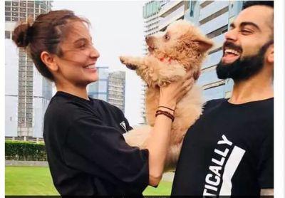 Virat Kohli And Anushka Sharma introduce New Friend