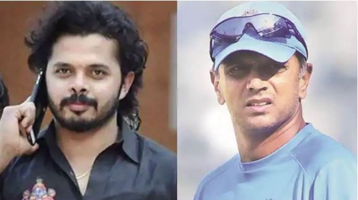 S Sreesanth abused Rahul Dravid in public, reveals Paddy Upton in his book