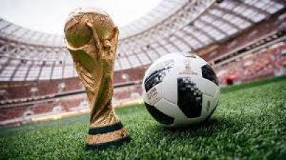 फीफा: क्रोएशिया की जीत का सबसे बड़ा जश्न होगा गोवा में, ऐसा क्यों?