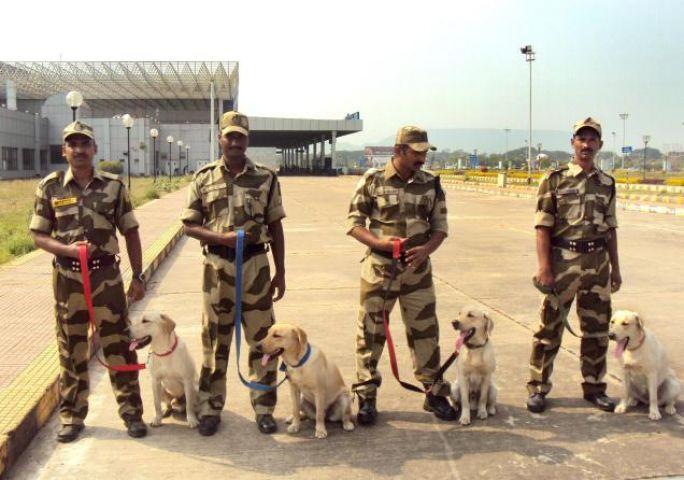 कानपुर क्रिकेट मैच : मैन गेट पर तैनात होगी CISF