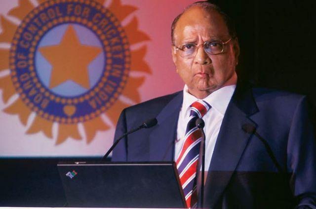 शरद पवार ने कहा श्रीनिवासन BCCI अध्यक्ष पद की रेस में नहीं है