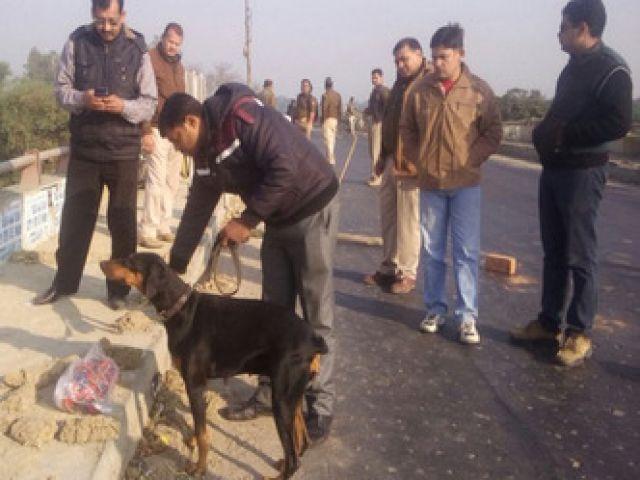 इलाहाबाद में सुरक्षा ऐजेंसियों को मिला बम
