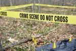 गेहूं काटने के विवाद में परिवार के दो भाईयों की मौत