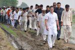 सरकार को बदला लेना है तो हमसे ले, किसानों से नहीं : राहुल
