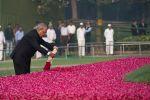 पंडित नेहरू को किया याद, अर्पित किए पुष्प