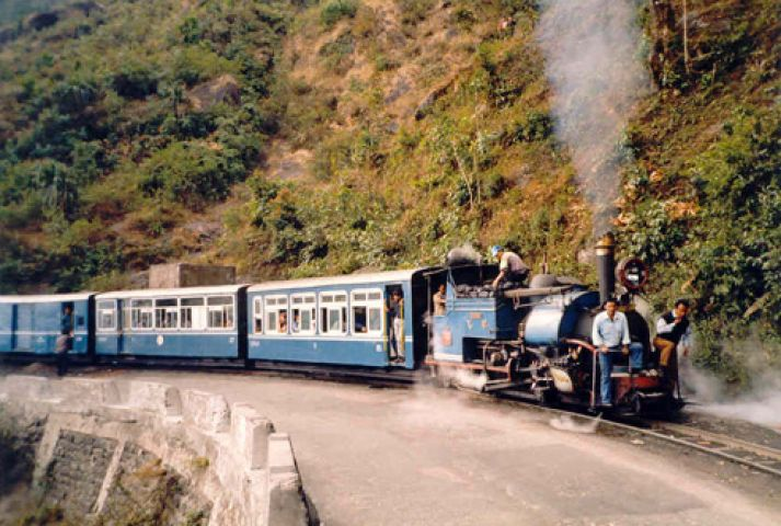 पटरी से उतरी टाॅय ट्रेन, दो ब्रिटिश नागरिकों की मौत