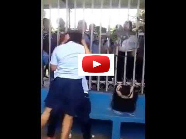 Video.... स्कूल छात्राओं का महायुद्ध
