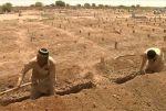 पाकिस्तान में खोदी जा रही है सामूहिक कब्रे