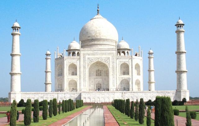 ताज गलियारे को बना दिया पशु कब्रगाह