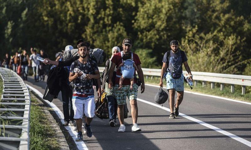 प्रवासी मुद्दे को लेकर हंगरी और क्रोएशिया आए आमने-सामने