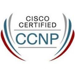 How Avanset VCE Player Helped Me Become a Cisco Certified Professional