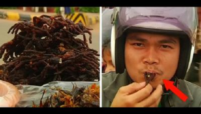 झींगुर से लेकर बरैया तक खाते हैं यहाँ पर लोग