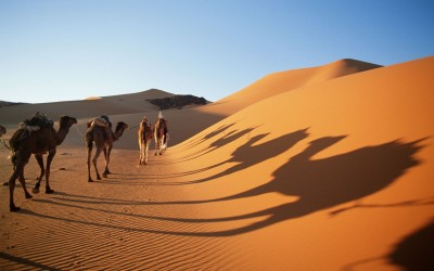The world's largest desert which is spread over ten countries