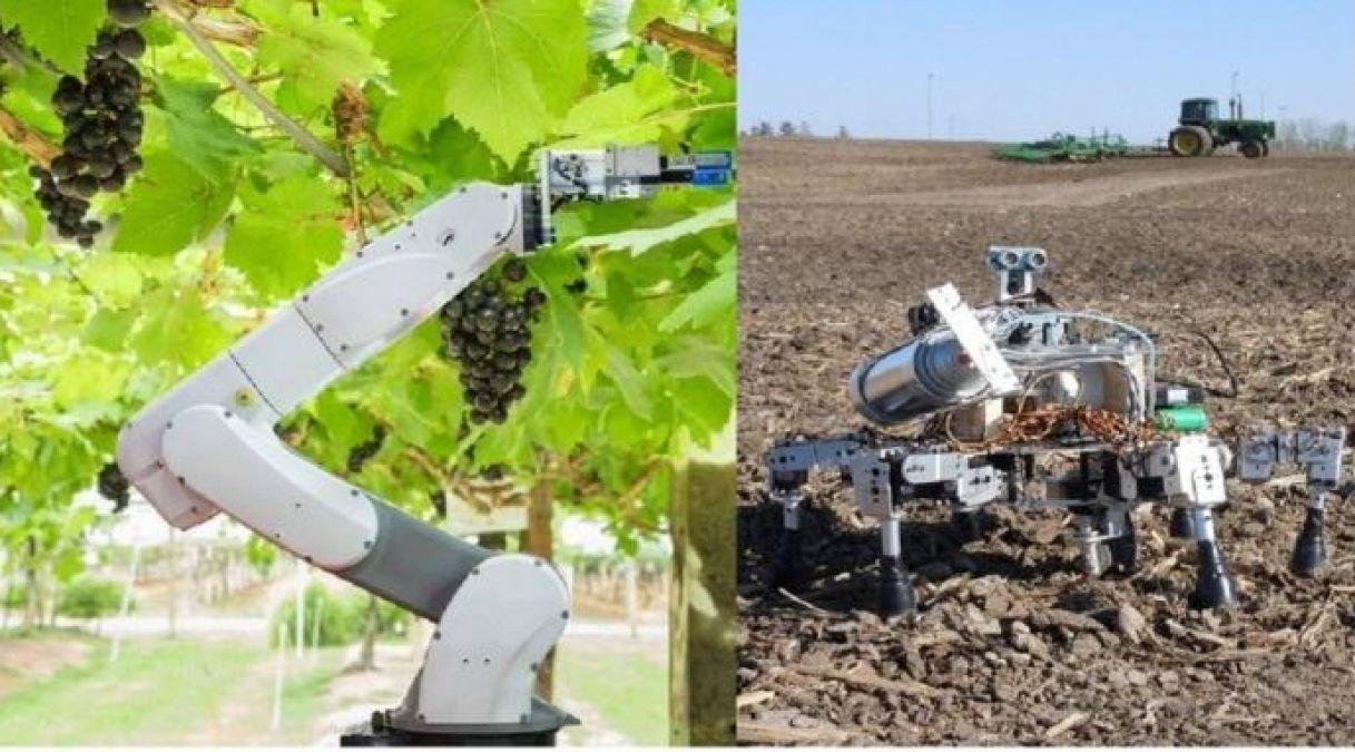 किसानों का काम छीन रहे रोबोट, खेती का हर एक काम कर रहे फटाफट