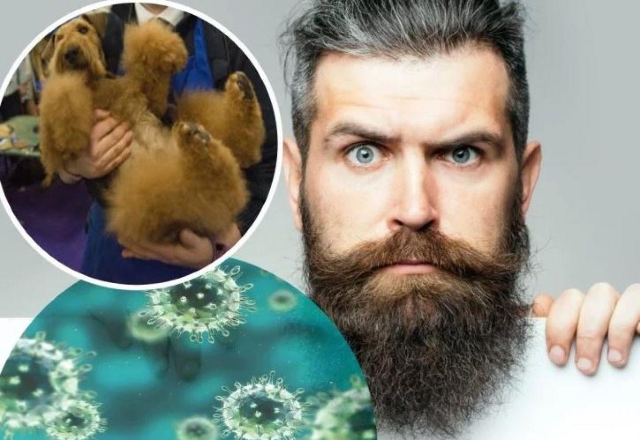 रिसर्च में हुआ चौंकाने वाला खुलासा, कुत्तों के बालों से भी ज्यादा हानिकारक है मर्दों  की दाढ़ी