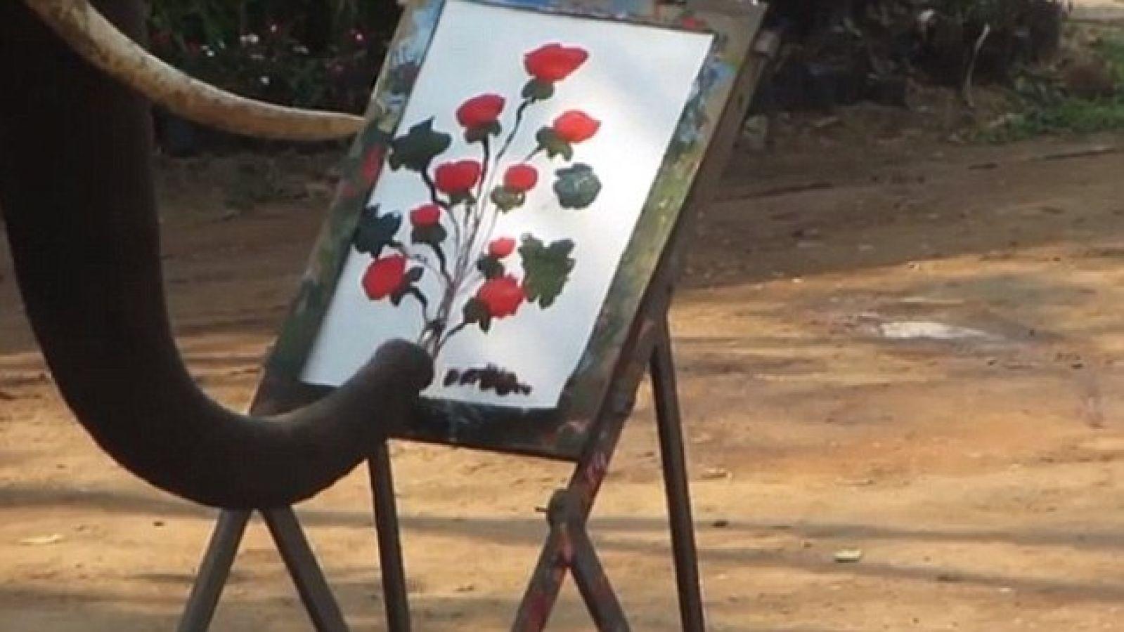 कमाल का है ये हाथी जो अपनी सूंड से करता है पेंटिंग