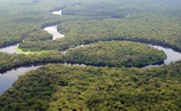 Know interesting facts about worlds second-largest forest congo rainforests