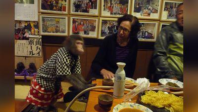 इस होटल में बंदर परोसेंगे आपको खाना..