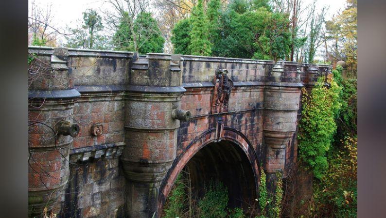 इस रहस्यमयी पुल पर आते ही सभी कुत्ते कर लेते हैं आत्महत्या
