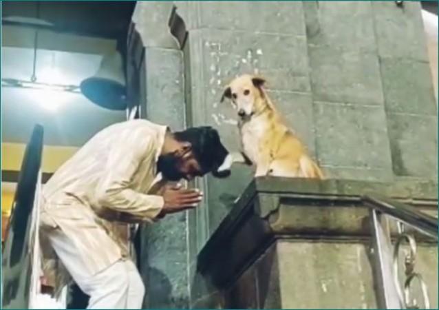मंदिर के बाहर बैठा कुत्ता भक्तों को दे रहा आशीर्वाद, वीडियो वायरल