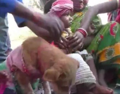 Odisha: Two children get married to dog, Know reason