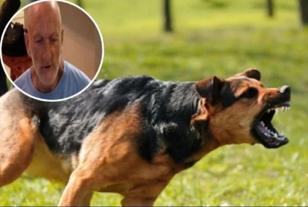 OMG ! मालिक को खा गए 18 पालतू कुत्ते, हड्डी तक नहीं छोड़ी