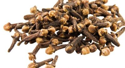 Clove can serve as a medicine to Cancer!
