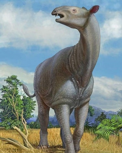 These giant animals belong to the era of dinosaurs, Even scientists do not even know the whole truth