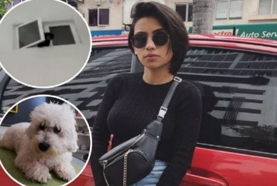 A Woman Took Home This Animal by misinterpreting dog then this Incident Happened