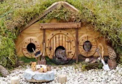 This man has build the whole village for rats, making so many special arrangements